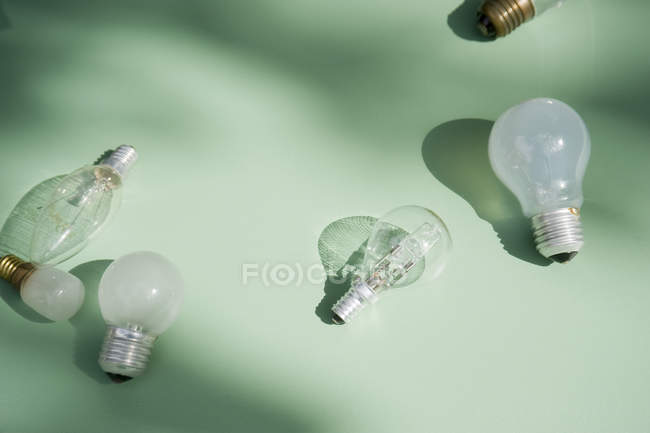 Close up of Various lightbulbs on light background — Stock Photo