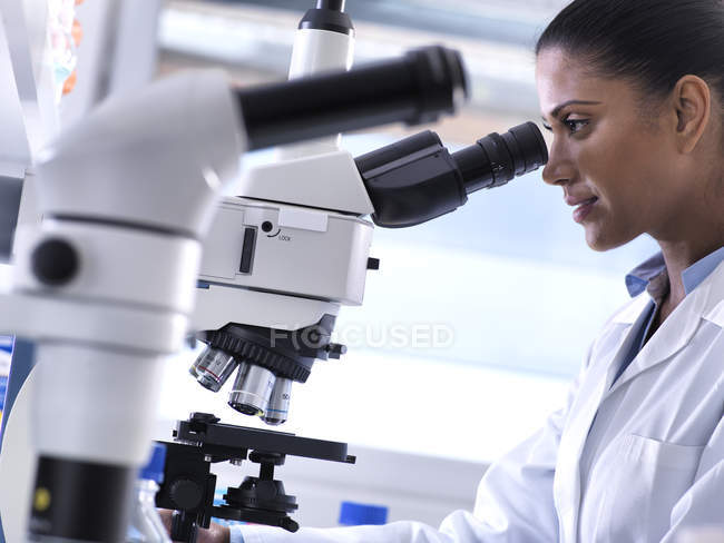 Biotechnology Research, female scientist examining a specimen under a microscope in the laboratory — Stock Photo
