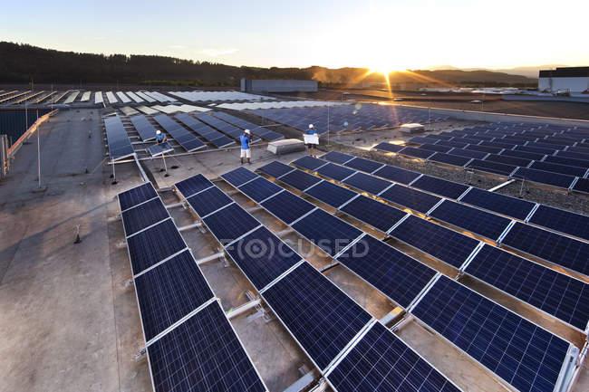 Trabalhadores montagem planta solar — Fotografia de Stock