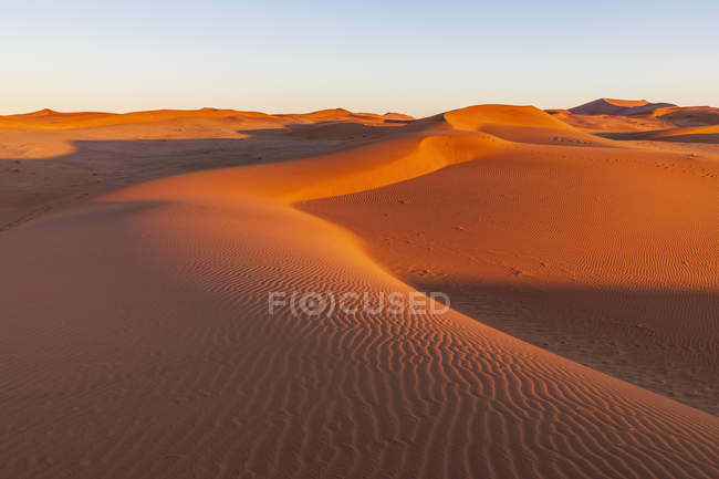 Africa, Namibia, Namib desert, Naukluft National Park, sand dunes in the morning light at sunrise — стокове фото