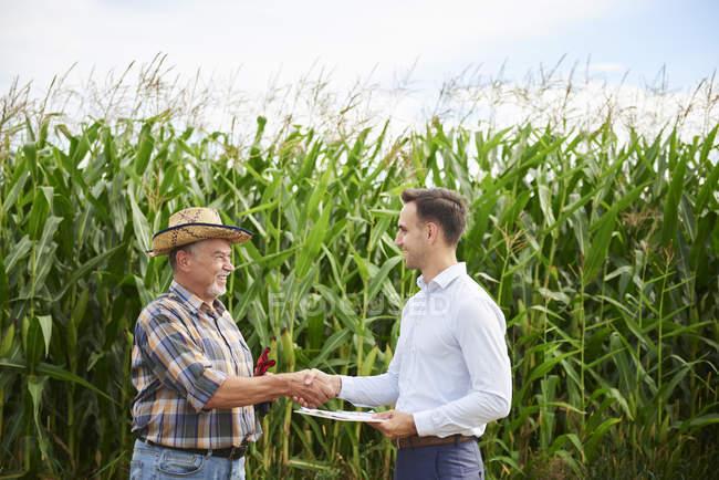 Agricultor e empresário apertando as mãos no milheiral — Fotografia de Stock