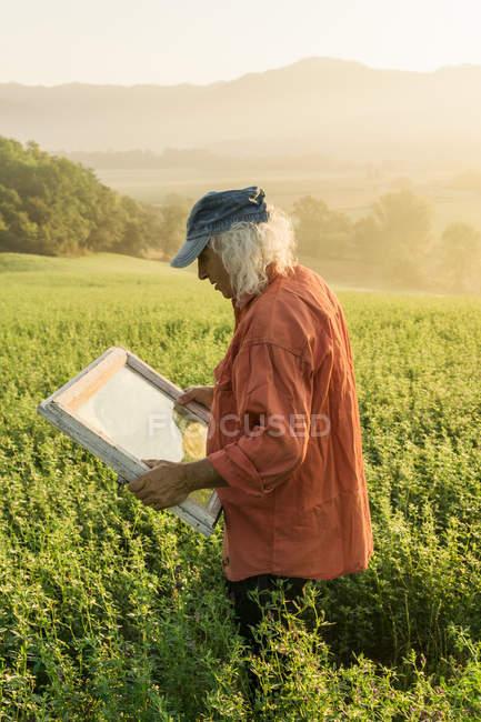 Itália, Toscana, Borgo San Lorenzo, homem sênior segurando moldura de janela no campo ao nascer do sol — Fotografia de Stock