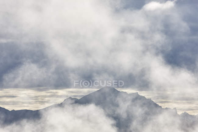USA, Alaska, Denali National Park, mountains in fog — Stockfoto