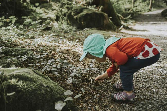 Собиратель камней во время путешествия по лесу — стоковое фото
