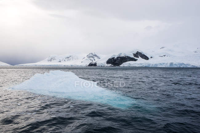 Antarctic, Antarctic Peninsula, iceberg — Stock Photo