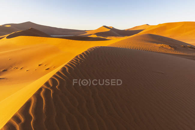 Africa, Namibia, Namib desert, Naukluft National Park, Dead Vlei and sand dune 'Big Daddy' — Photo de stock