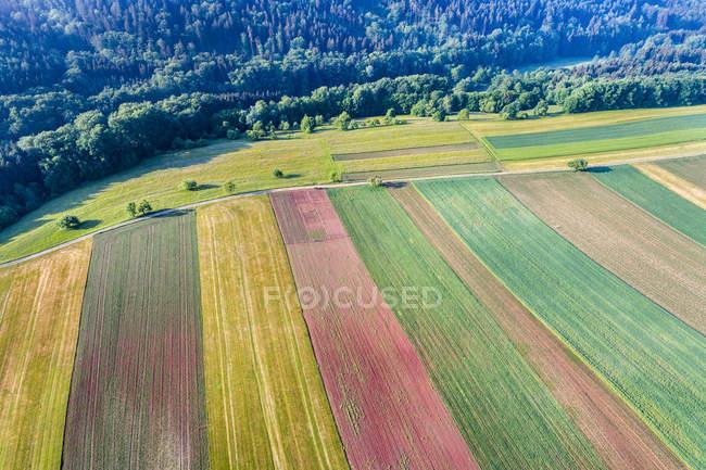 Alemania, Baden-Wuerttemberg, Rems-Murr-Kreis, bosque de Franconia de Suabia, Vista aérea de los campos - foto de stock