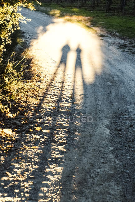 Italy, Tuscany, shadows of people on dirt track — Stock Photo