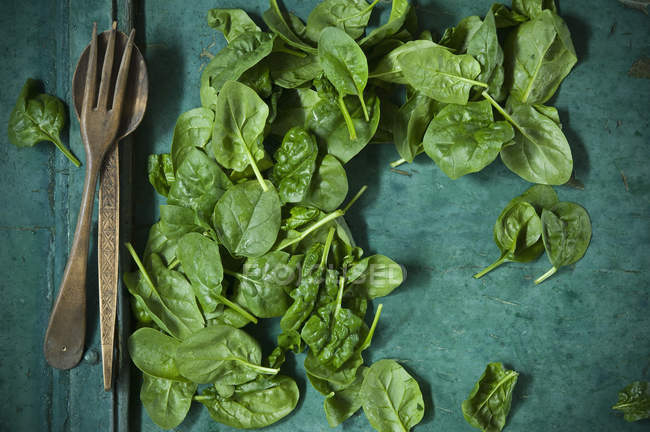 Spinach leaves and salad cutlery on green background — Stock Photo