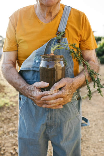 Senior man holding glass jar with soil and growing carrot — Stock Photo