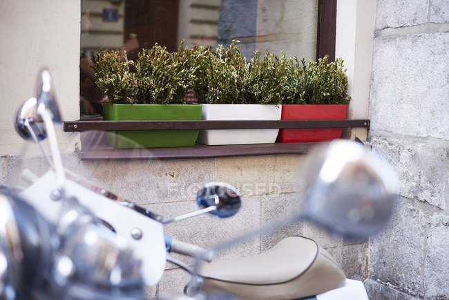 Three flower box on window sill of a house — Stock Photo
