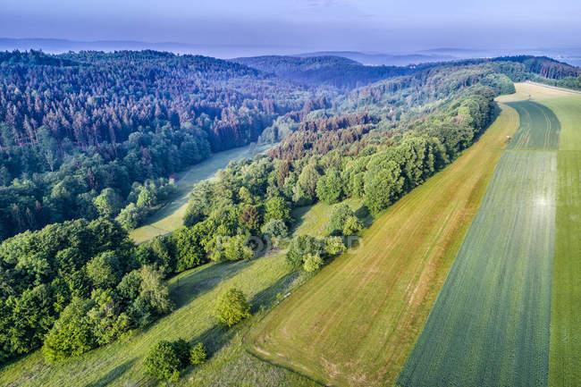 Alemania, Baden-Wuerttemberg, Rems-Murr-Kreis, bosque de Franconia de Suabia, vista aérea de campos y bosques - foto de stock