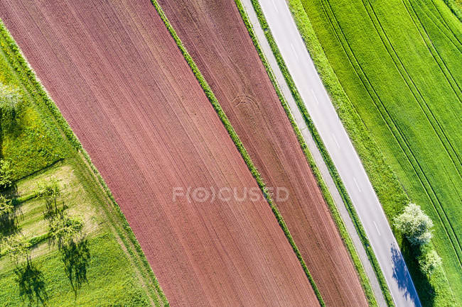 Alemania, Baden-Wuerttemberg, bosque de Franconia de Suabia, Rems-Murr-Kreis, campo arado y carretera - foto de stock