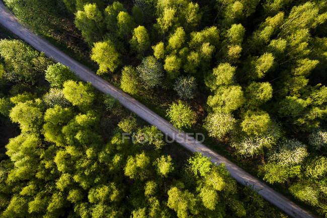 Германия, Баден-Вюртемберг, Швабский Альб, Долина Филса, Весной вид с воздуха на Шурвальд — стоковое фото