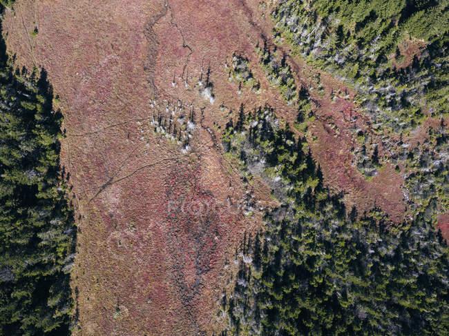 Уса, Западная Вирджиния, вид с воздуха на район уайлдерза Долли Содс — стоковое фото