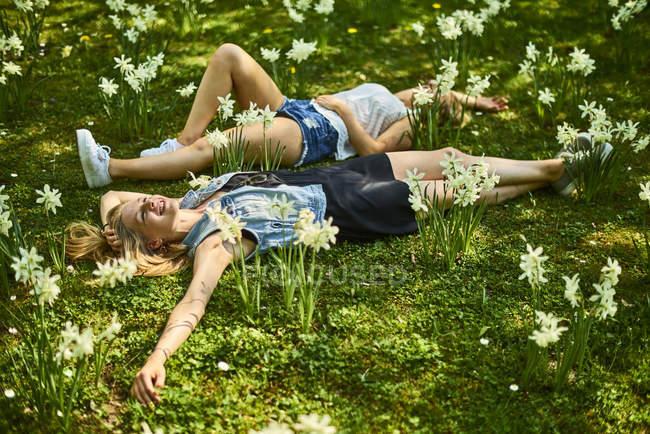 Двоє друзів розслабляє на квітці луг — стокове фото