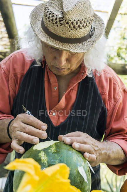 Senior man working on a watermelon with carving tool — Stock Photo