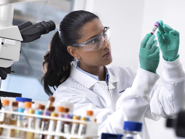 Feamle scientist preparing a blood sample for clinical testing in the laboratory — Stock Photo