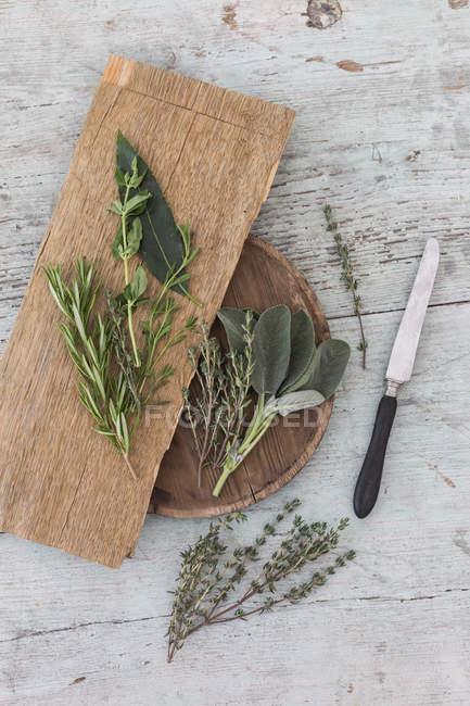 Erbe provenzali fresche, coltelli e tavole di legno — Foto stock