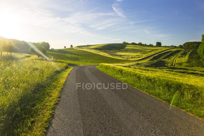 Austria, Innviertel, carretera rural vacía y campos contra el sol - foto de stock