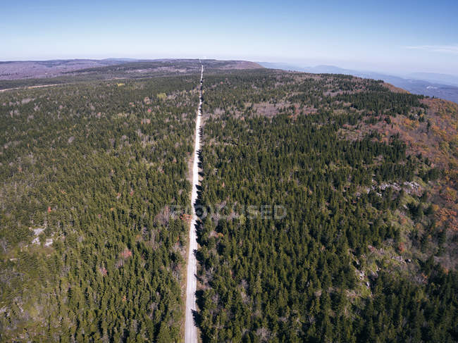 USA, West Virginia, Aerial view of road through Dolly Sods Wilderness area — стокове фото