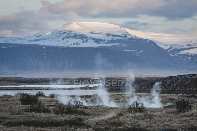 Iceland, Vestfiroir, Reykholar, geothermal area — Stock Photo