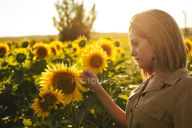 Portrait of a young woman in a sunflower field — Stock Photo