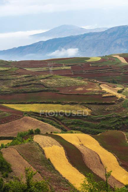 China, provincia de Yunnan, Dongchuan, Tierra Roja - foto de stock