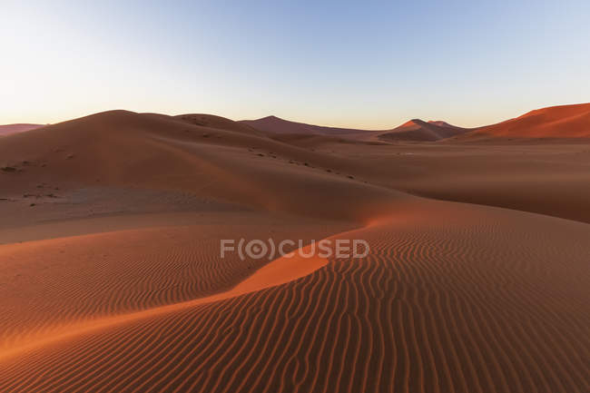 Africa, Namibia, Namib desert, Naukluft National Park, sand dune in the morning light at sunrise — Stock Photo
