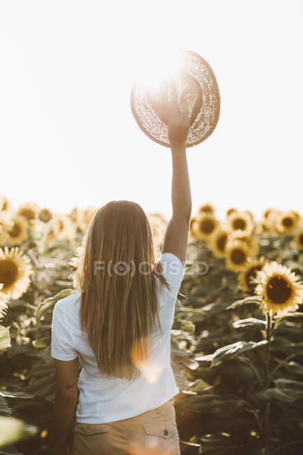 Vista posteriore di giovane donna con cappello di paglia, in piedi in un campo di girasoli — Foto stock