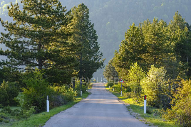 Albania, Qark Korca, Kolonje, empty country road — Stock Photo