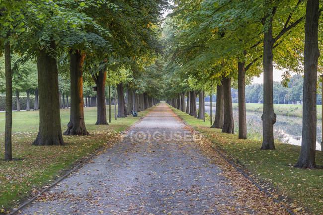 Germania, Bassa Sassonia, Hannover, Herrenhaeuser Gaerten, vicolo in autunno — Foto stock