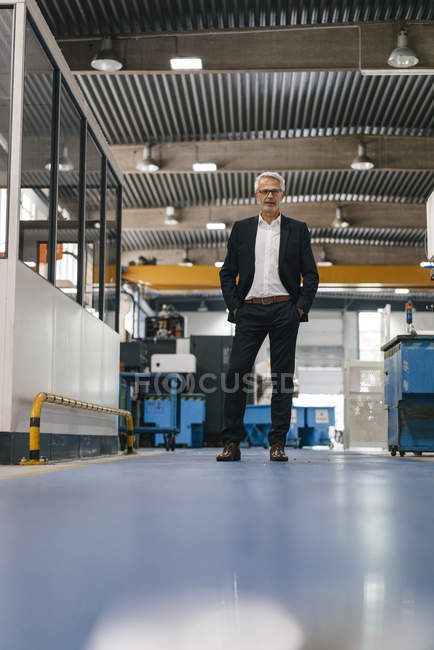 Successful entrepreneur in factory workshop of company — Stock Photo