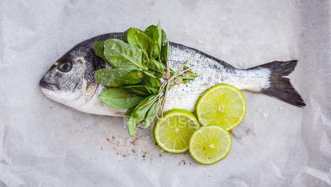 Sea bream with fresh herbs and lime slices — Stock Photo