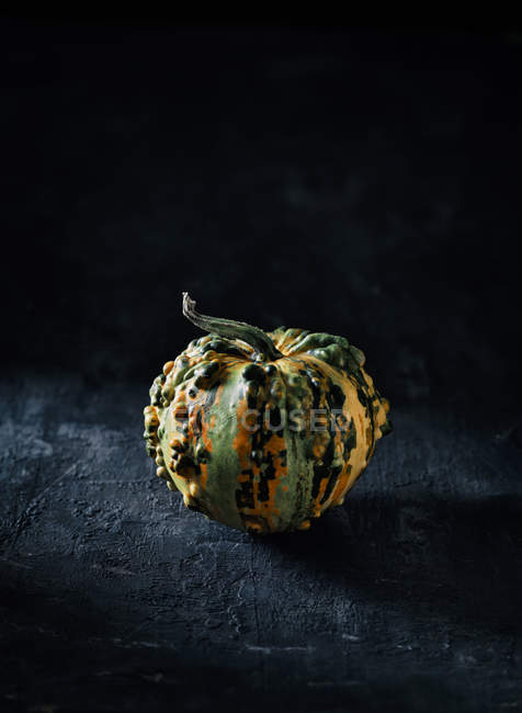 Tiny decorative gourd in front of dark background — Stock Photo