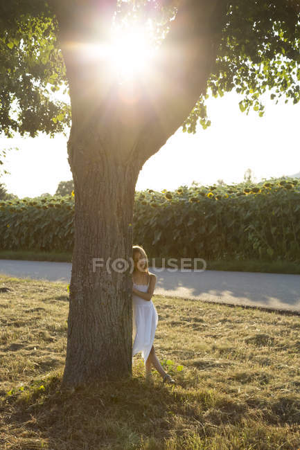 Girl leaning on tree trunk at summer evening — Stock Photo