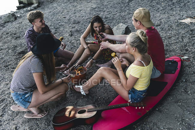 Groupe d'amis assis ensemble pour un barbecue — Photo de stock