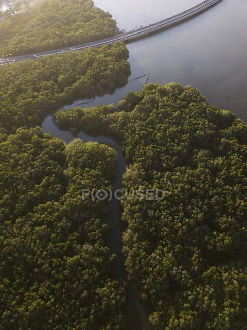 Indonesia, Bali, Vista aérea de una carretera que cruza el bosque de manglares en la costa - foto de stock