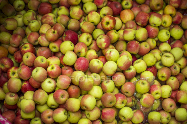 Fresh apples  in factory being washed — Stock Photo