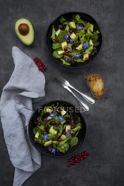 Две миски смешанного салата с авокадо, красной смородиной и борщом — стоковое фото