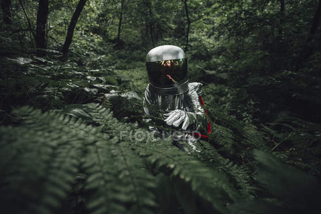 Spaceman exploring nature, examining plants in forest — Foto stock