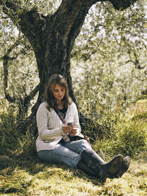 Italia, mujer sentada bajo el olivo usando el teléfono celular - foto de stock