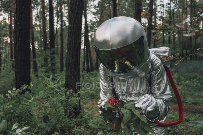Spaceman exploring nature, examining plants in forest — Stock Photo