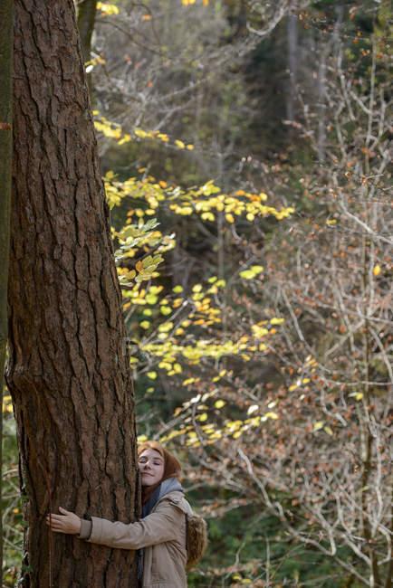 Усміхнена Дівчинка-підліток обіймає стовбур дерева в осінньому лісі — стокове фото
