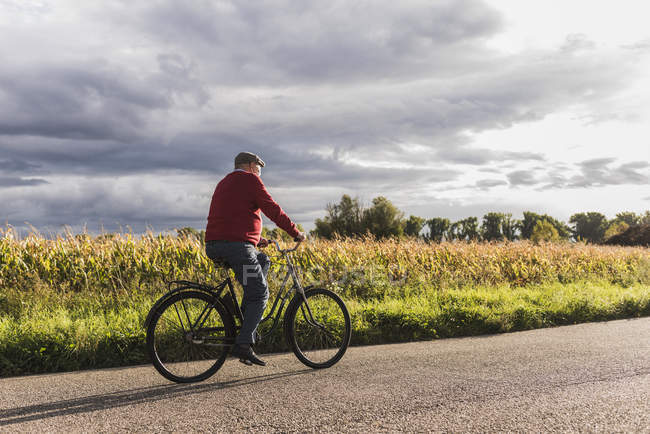 Senior man riding bicycle on country lane — Stock Photo
