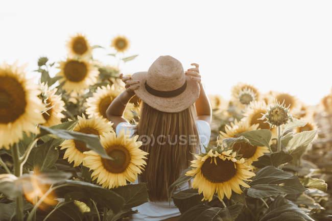 Vista posteriore di giovane donna in piedi nel campo dei girasoli — Foto stock