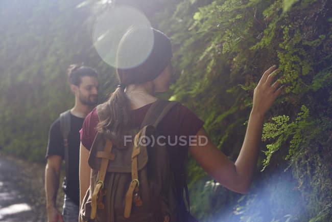 Casal caminhadas em uma floresta tocando plantas — Fotografia de Stock