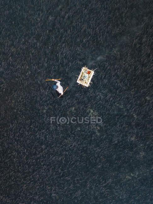 Indonésia, Bali, Vista aérea da fazenda de camarão — Fotografia de Stock