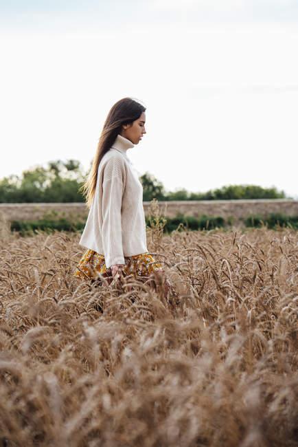 Junge Frau mit überdimensionalem Rollkragenpullover steht im Maisfeld — Stockfoto