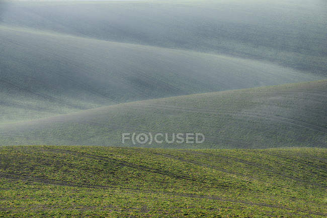 Rolling field landscape in early spring — Stock Photo